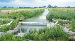 canal-irrigation-system-in-india-506