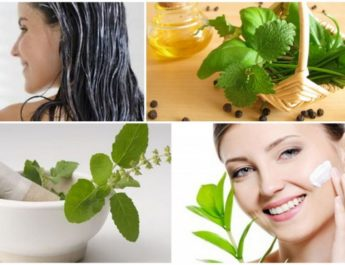 Benefits-of-Using-Basil-for-Skin-and-Hair_58f50bdd4a143