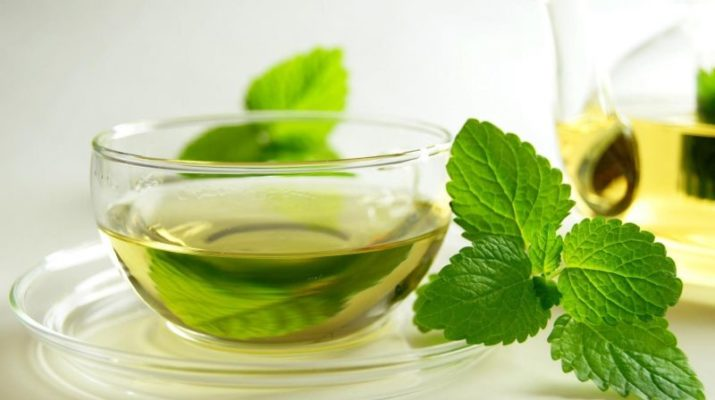 mint-tea1_58fa5e8a99ecf
